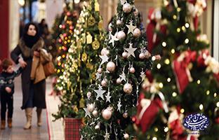 فروش کاج کریسمس در تهران-تهران شناسی