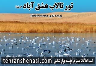 تالاب-عشق-آباد-تهران-شناسی
