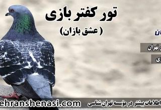 تور کبوتر بازی-تهران شناسی
